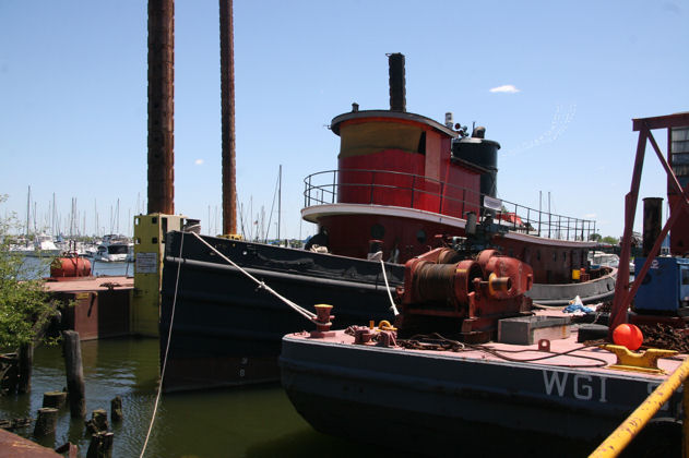 Tug Pegasus at home